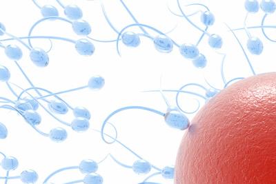 Surrogacy_Fertility_Blog_April09.jpg